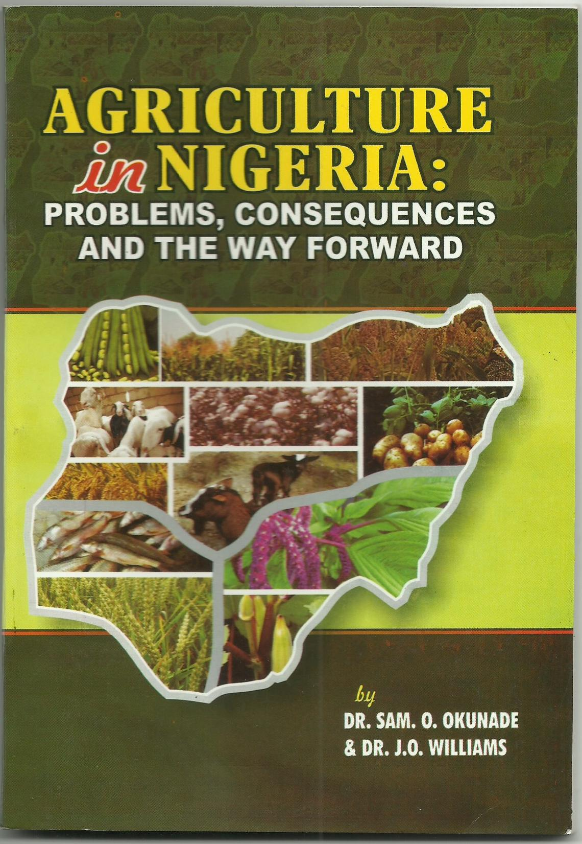 Cover of Agriculture in Nigeria:Problems, Consequences and the way forward